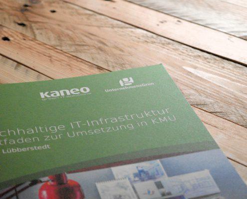 Green IT Leitfaden - Umsetzung einer nachhaltigen IT Infrastruktur